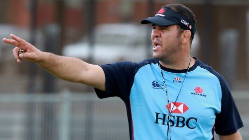 Optimistic coach Michael Cheika . . . ready for another mountain. Photo: News Limited