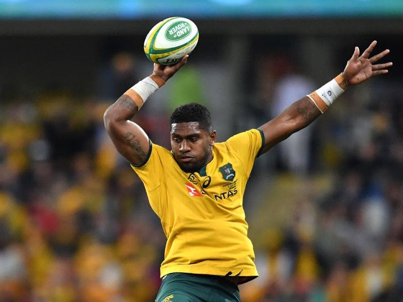 Wallabies-13082019-AFP
